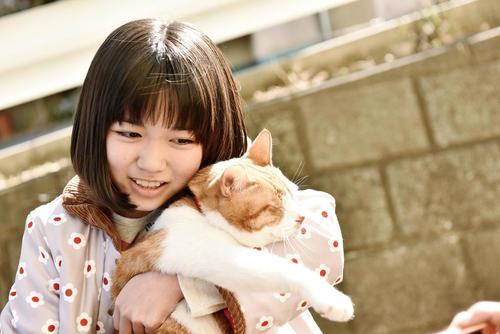 「トラさん~僕が猫になったワケ~」場面写真③.jpg