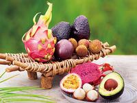 トロピカルフルーツ、食べたらタネをまこう!
