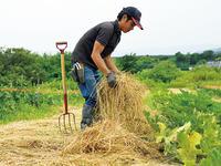 有機農業を始めて1年——自然の中で生きるということ