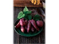 ベランダでイモ掘りできちゃう! サツマイモの袋栽培